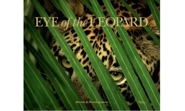 Joubert-Eye-Of-The-Leopard